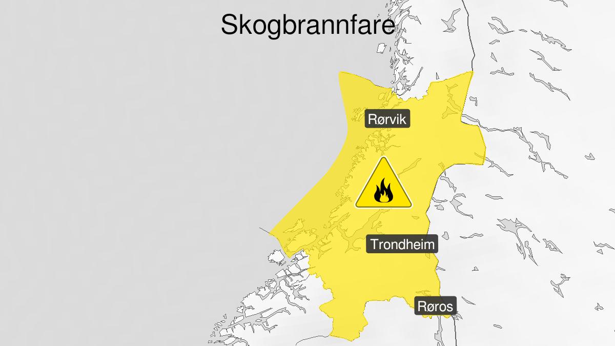 Map of forest fire danger, yellow level, Trøndelag, 05 August 07:00 UTC to 08 August 03:00 UTC.