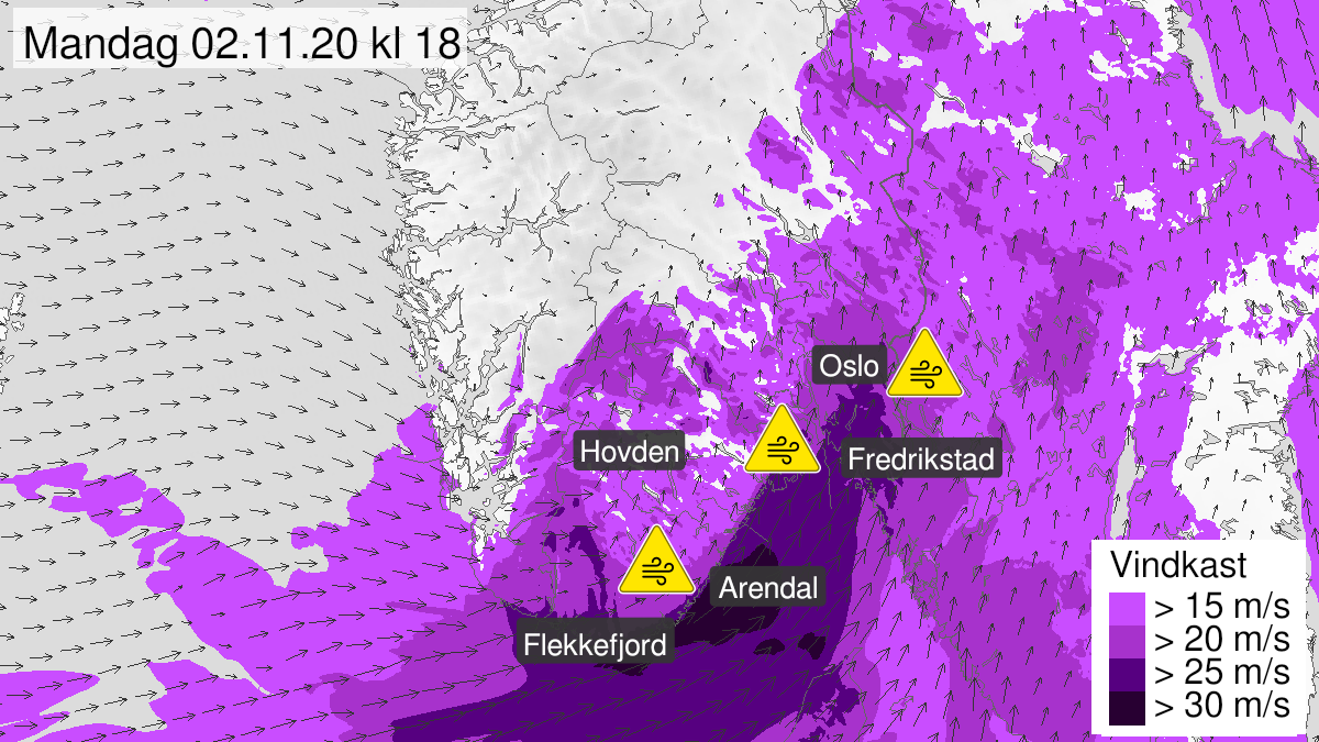 Map of strong wind gusts, yellow level, Vest-Agder, Aust-Agder, Telemark, Vestfold, Oestfold, Oslo and Akershus and Buskerud, 02 November 06:00 UTC to 02 November 21:00 UTC.