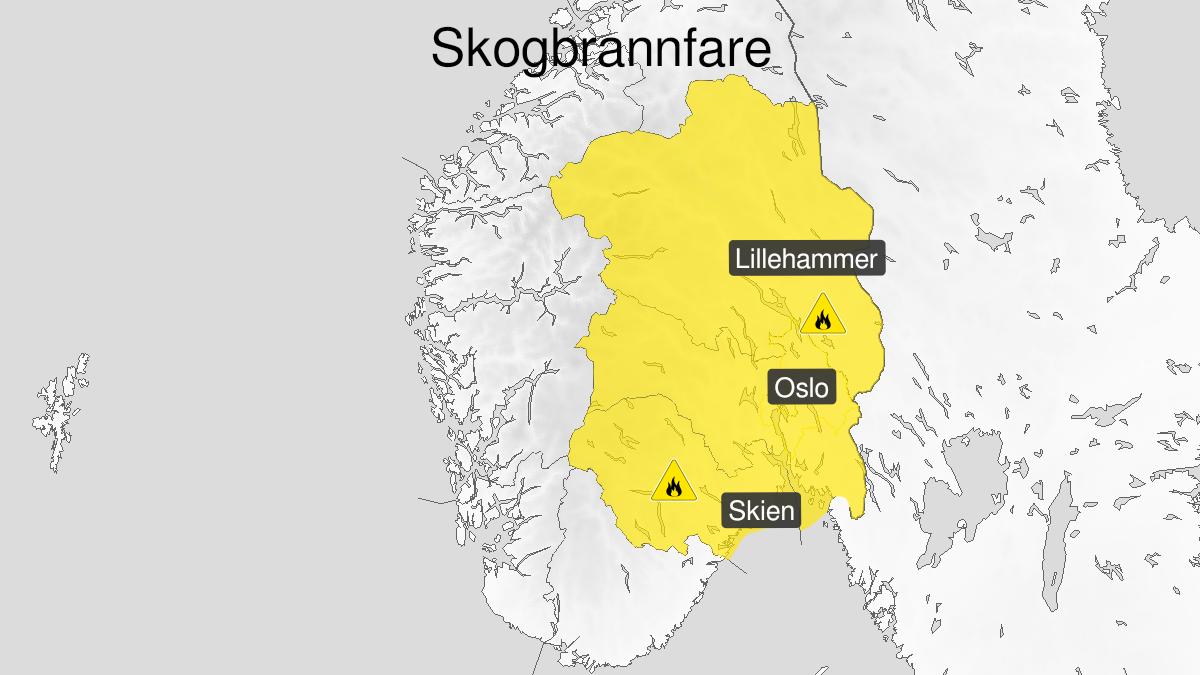 Kart over skogbrannfare, gult nivå, Østlandet, 14 June 06:00 UTC til 17 June 20:00 UTC.