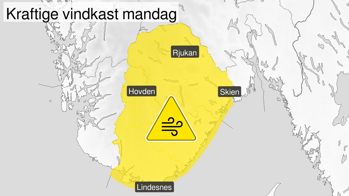 Kart over kraftige vindkast, gult nivå, Telemark og Agder, 06 July 09:00 UTC til 06 July 19:00 UTC.