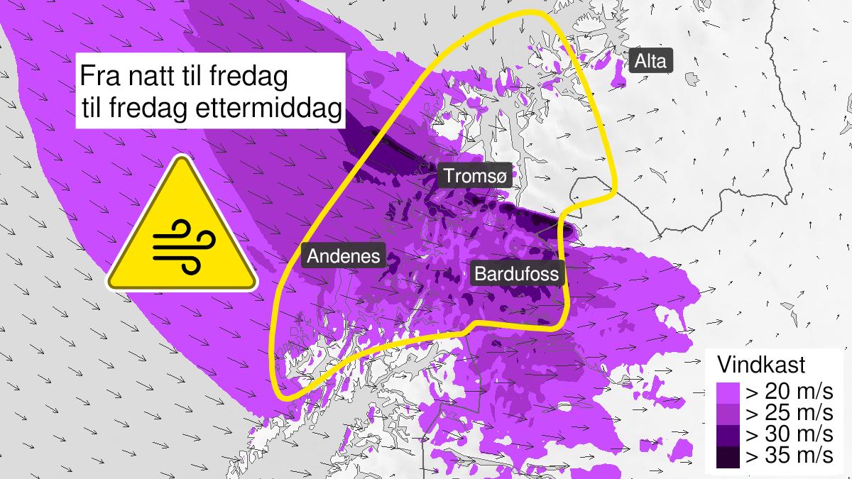 Kart over kraftige vindkast, gult nivå, Vesterålen og Troms, 11 February 23:00 UTC til 12 February 12:00 UTC.