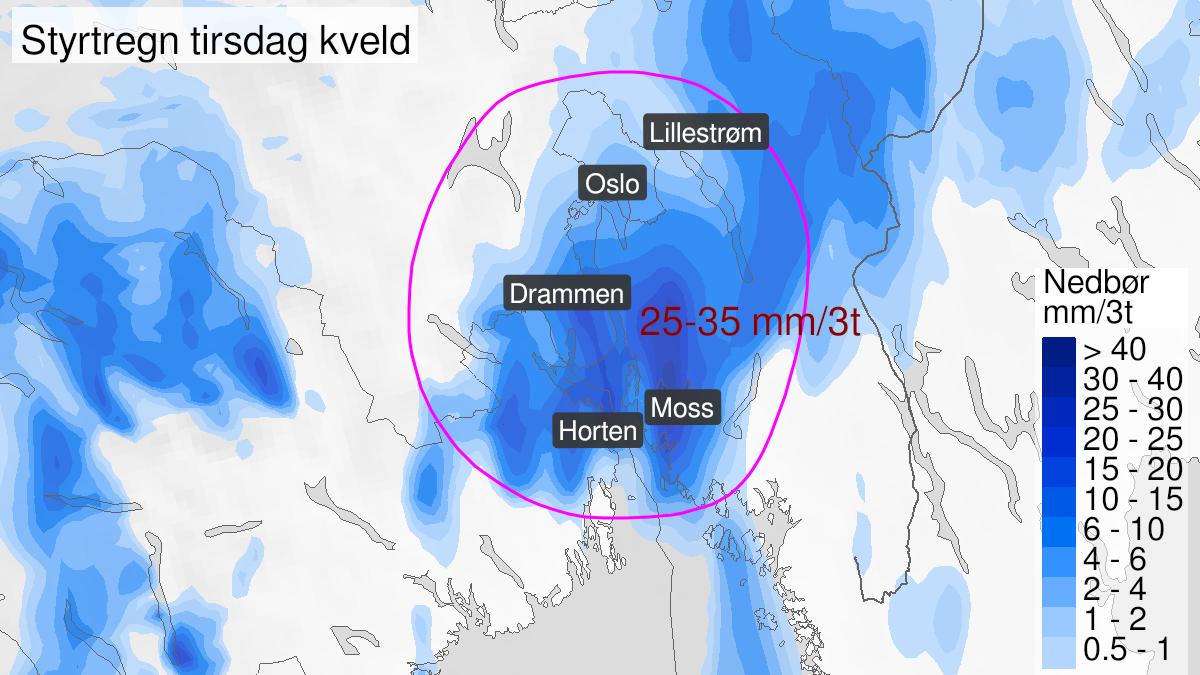 Kart over styrtregn, gult nivå, Østfold, Oslo, Akershus, Buskerud og Vestfold, 14 July 16:00 UTC til 15 July 00:00 UTC.