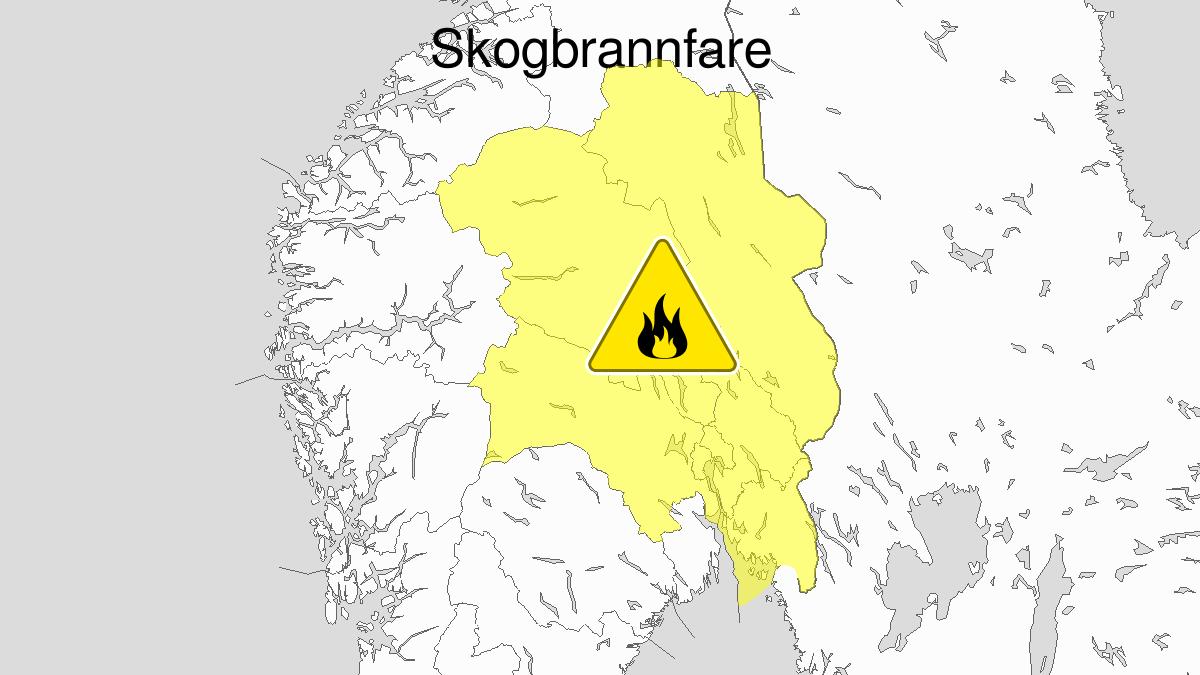 Skogbrannfare, gult nivå, Østlandet, 16 July 08:00 UTC til 20 July 22:00 UTC.