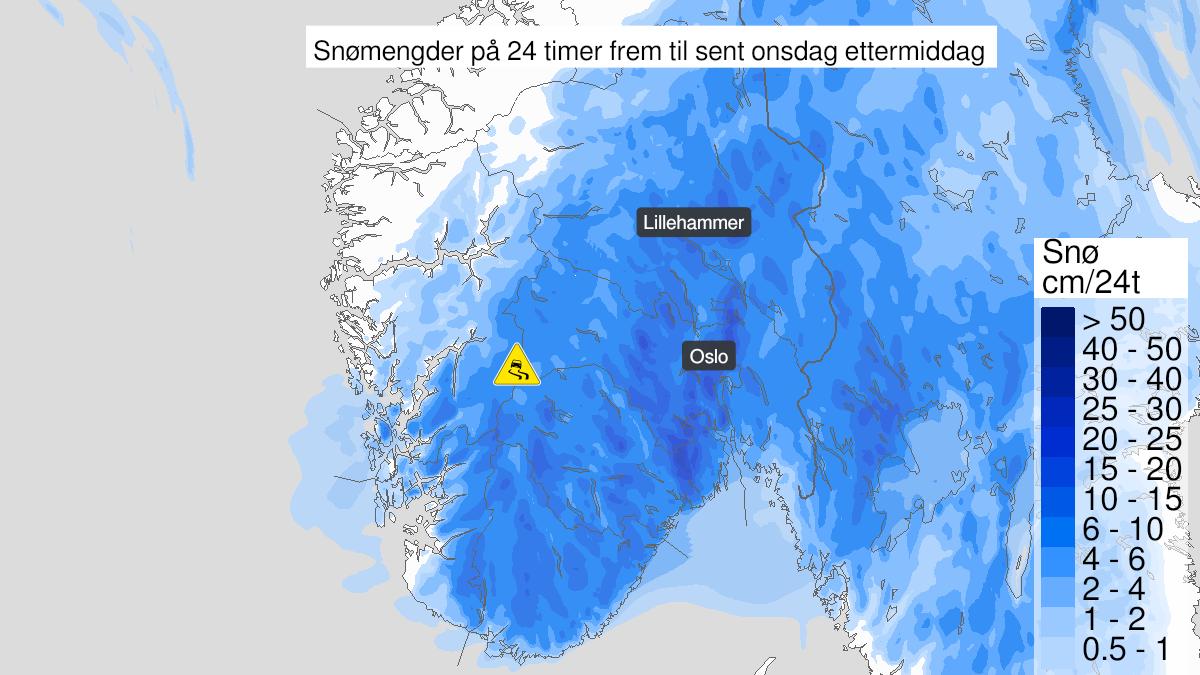 Kart over kraftig snøfokk, gult nivå, Hardangervidda, 20 January 08:00 UTC til 20 January 19:00 UTC.